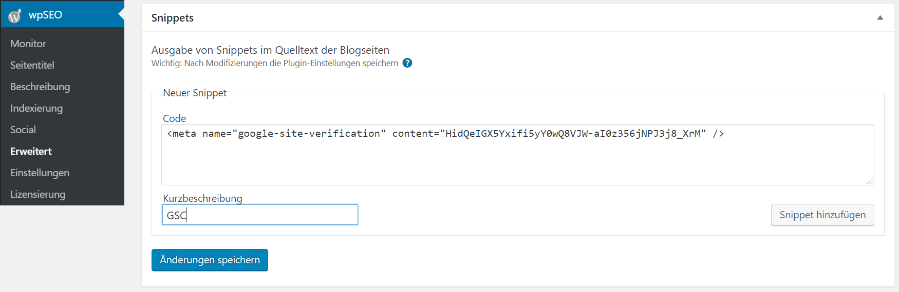 Google Search Console mit wpSEO und WordPress verifizieren