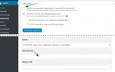 Ausgabe und Steuerung von Canonical URLs in WordPress